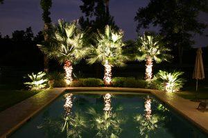 eclairage-arbres